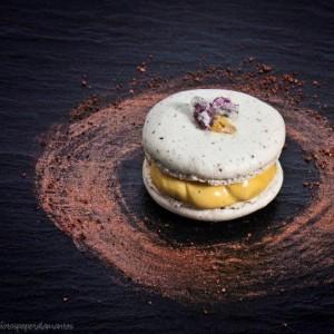 Macaron-de-cacau-del-collaret-con-helado-de-calabaza-ecologica2